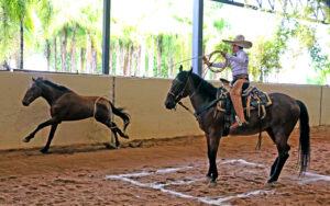"""José Antonio Salcedo Aceves acierta un pial de 18 unidades en la competencia que le dio el liderato de los charros completos categoría Infantil """"A"""""""
